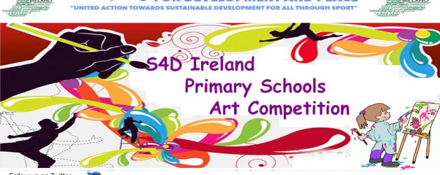 S4D Ireland IDSDP School Poster Competition 2016